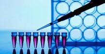 AstraZeneca dio detalles de su cóctel de anticuerpos monoclonales para prevenir y tratar el COVID-19